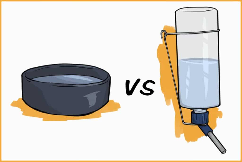 Rabbit bowl vs. a rabbit water bottle