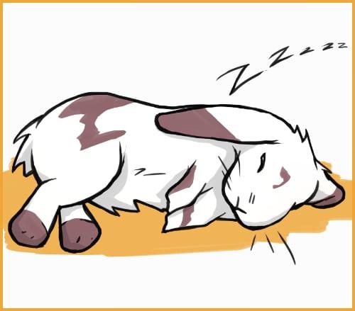 rabbit snoring