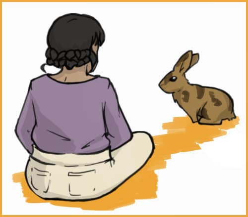 person sitting with a rabbit
