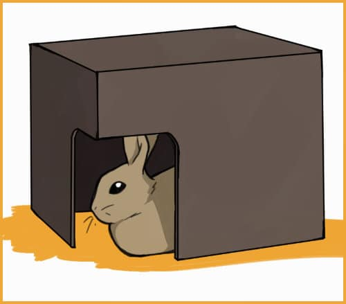 rabbit in a hidey house