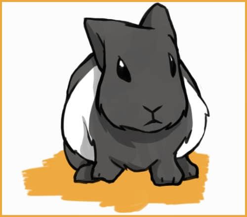 bloat in rabbits