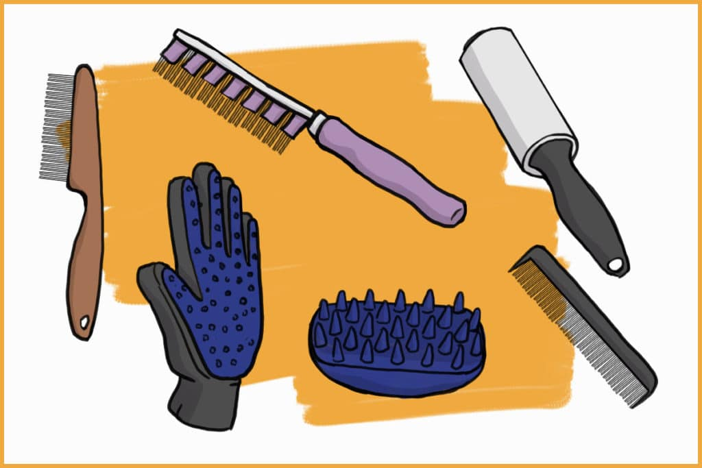 rabbit grooming tools