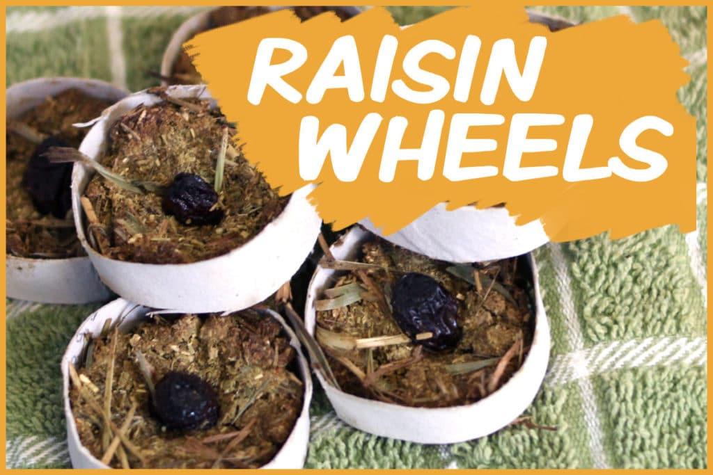Raisin wheels