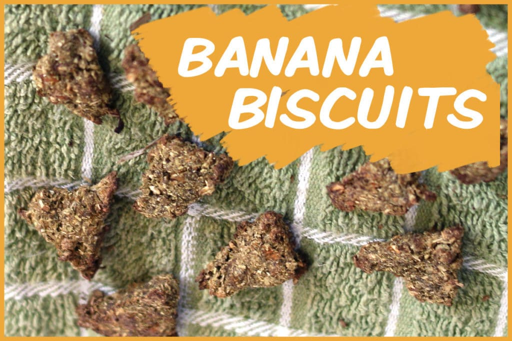 banana biscuits