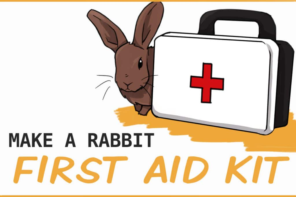 RABBIT FIRST AID KIT