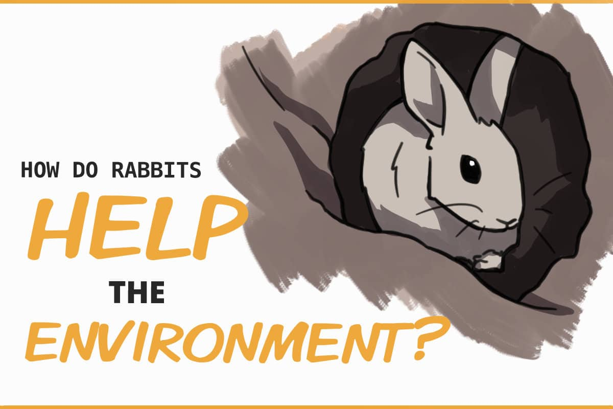 how do rabbits help the environment?