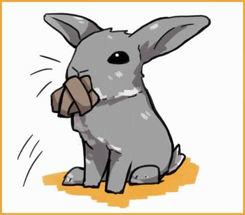 DIY rabbit toys