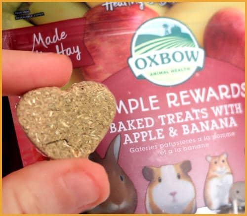 Oxbow simple rewards treats
