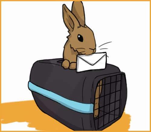 rabbit with ESA documentation