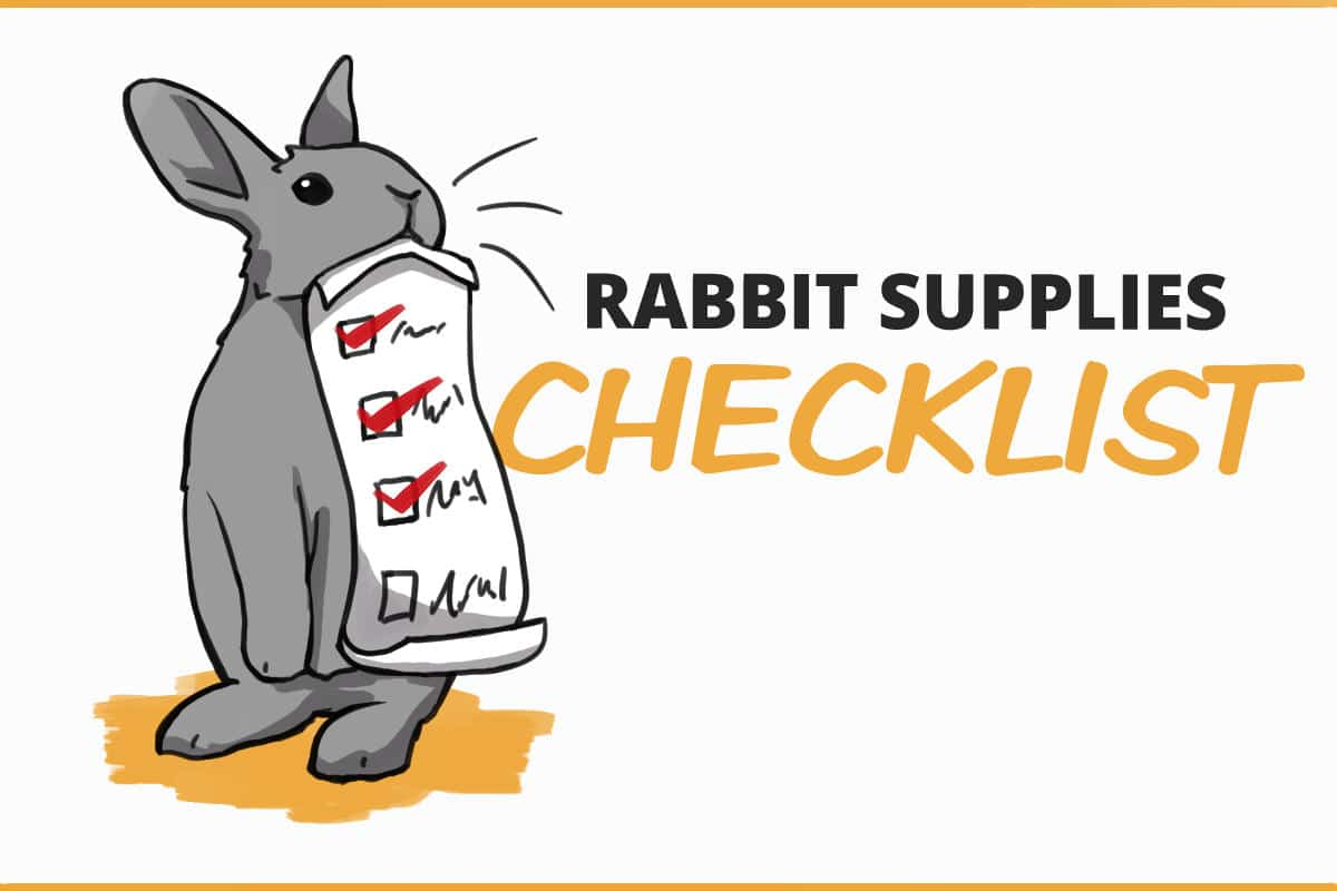 Rabbit supplies checklist