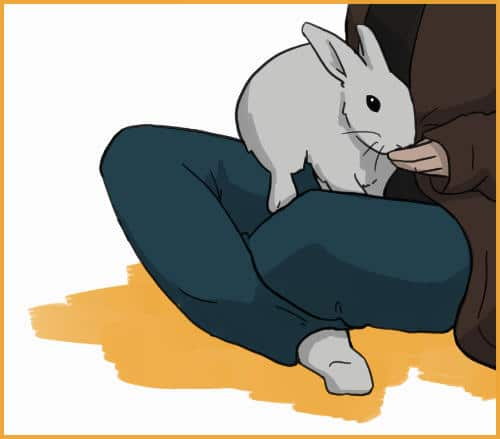 Step 3: hop on your lap