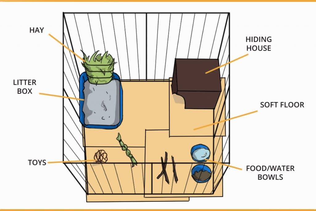 how to set up a rabbit enclosure diagram