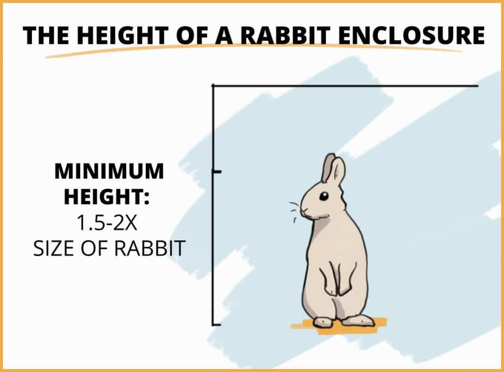 visual example of the height of a rabbit enclosure