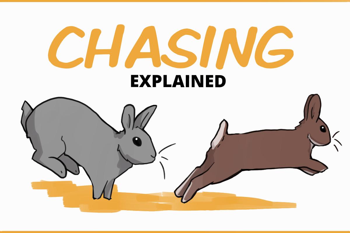 chasing explained